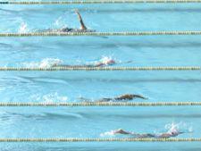 Web Swimming laps