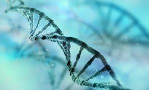 Scientists identify a gene mutation that may cause atopic dermatitis