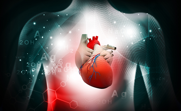 Cardiovascular Disease Risk Low for People with AD