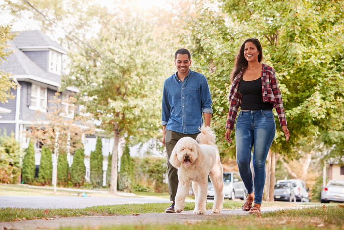 man and woman walk a dog outdoors
